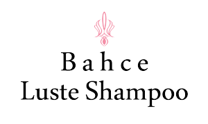 logo bache